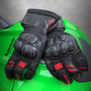Frank Thomas Review 1.0 Leather Motorcycle Gloves Red